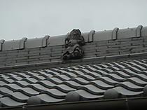 P1330295