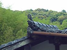 P1050012