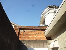S50p1100894